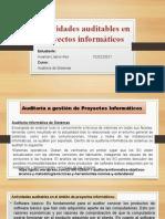 Actividades auditables - PI.pptx