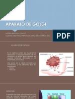 APARATO DE GOLGI.pdf