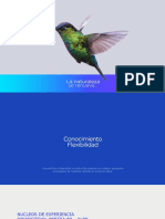 PENTRA_80_XL80_2020.pdf
