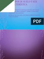 Los tipos de suelo y sus característica.pptx