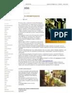 Cuadernillo de recetas_ ACEITES AROMATIZADOS