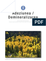 Adeziunea_si_Demineralizarea