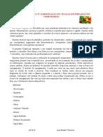 TRABALHO PRÁTICO Nº 2.docx
