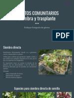 6. Siembra, trasplante y reproducción.pptx.pdf