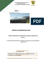 Semana 05 _Problemas Ambientales (1).pptx