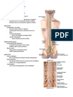 Spinal Cord Anatomy and Organization Handouts