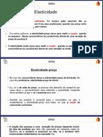 11135-elasticidades-jaco-braatz.pdf
