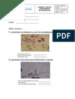 F- MD4-01 TEST DE CONOCIMIENTO BACTERIOLOGO