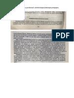 Raportul organelor cu peritoneul