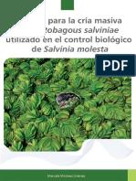 DESCRIPCION DE LA PLANTA SILVINIA.pdf