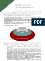 Resumen Cap 1 CCNA4