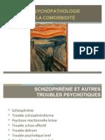 Schizo et troubles psychotiques_ppt p3, val doc