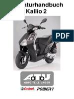 81962597-ReparaturHandbuchKallio (2).pdf