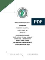 PROYECTO Ergonomia.docx