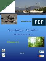 Ficha Xiriualtique Jiquilisco.pdf