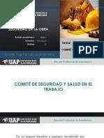 3 COMITE DE SEGURIDAD.pdf
