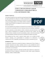 LINEAMIENTOS CLASES DE MAESTRÍA Y DOCTORADO BAJO LA MODALIDAD VIRTUAL referencia resolucion 9224 (1) (1)