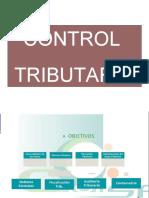 Auditoria_Tributaria.ppt