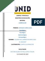 enfoques del currículum. 2a.tarea