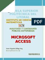 Microsoft Access1