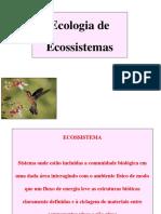 Aula5_Ecoss_Estrutura_energia