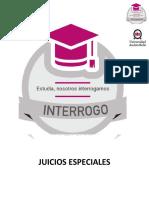 JUICIOS ESPECIALES.pdf
