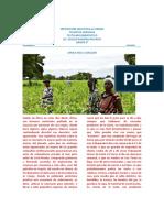 TALLER_DE_LENGUAJE_PARA_GRADO_SEXTO_SEGUNDO_PERIODO jaider.pdf