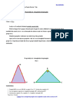 0_triunghiul_dreptunghic_mozaic.pdf