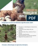 2-Aula-Aves-Em-SAF-Karin-Hanzi-pdf.pdf
