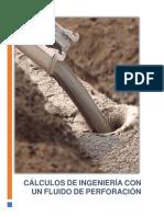 CÁLCULOS DE INGENIERÍA CON UN FLUIDO DE PERFORACIÓN.
