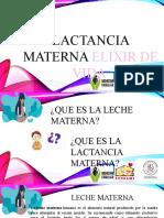 LACTANCIA MATERNA ELIXIR DE VDA.pptx