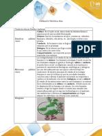 Anexo 1-Formato Técnica IRIA trabajo compañera