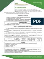 12-consorcio-de-cafe-com-bananeira.pdf