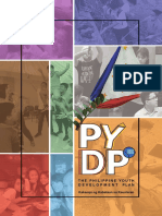 UPDATED PYDP DOCUMENT.pdf