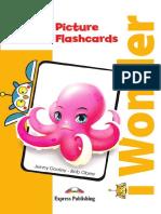 i Wonder Starter Picture Flashcards