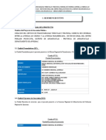 Resumen Ejecutivo DEL PI.docx
