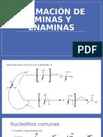 263115955-Formacion-Iminas-y-Enaminas.pdf