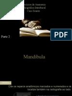 MANDÍBULA32