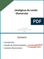 Glomerulopatías (clase Dra. Segura) modif por MCCA 2020 v3_compressed
