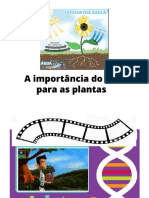 fotossintese SC.pdf