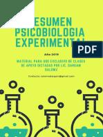 Resumen Experimental 2019 BY SALOMÉ.pdf