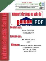Rapport de stage avec Mr.NAOUFEL Faouzi - Copie.pdf
