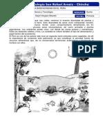 20201029-121009-LA BIODIVERSIDAD EN EL PERU