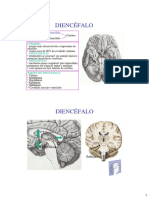 DIENCÉFALO.pdf