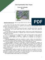 43 - ERVAS.pdf
