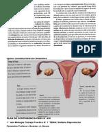 2° cuatrimestrs  tp 8  Sistema Reproductor Femenino
