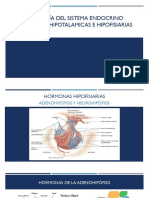 2. HORMONAS HIPOTLAMICAS E HIPOFISIARIAS