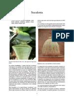 Suculenta.pdf