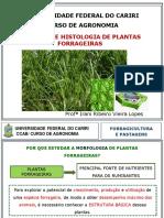 ANATOMIA E HISTOLOGIA (Aula 2).pdf