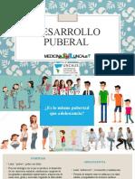 Desarrollo puberal taller. 1